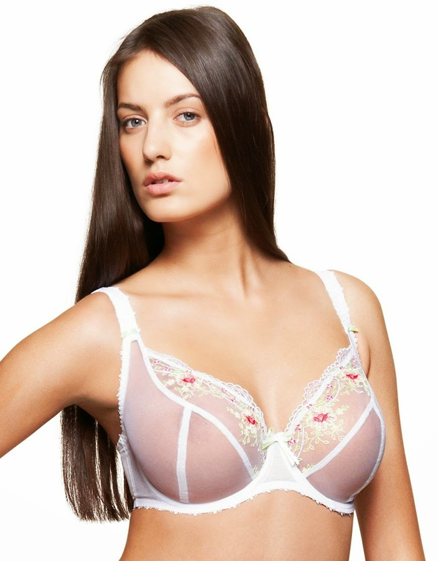 df13572c5 Underwire Bra Related Keywords   Suggestions - Underwire Bra Long ...