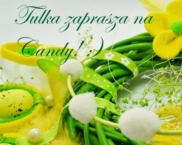 Candy u Kasi - Tulki