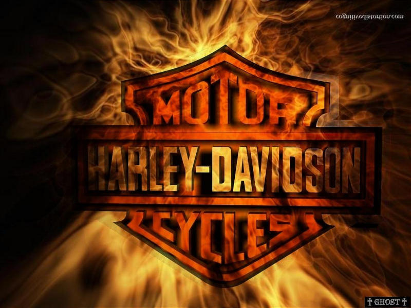 Harley Quin Harley Davidson Logos