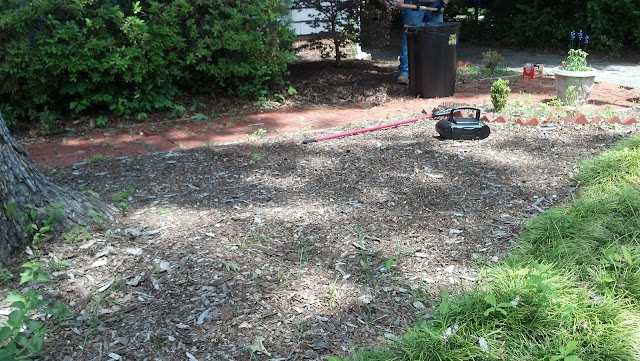 Dirty Wood Chips ~ The good stuff may
