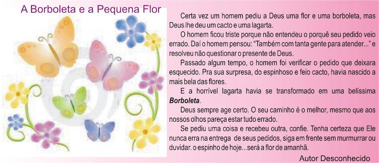 A Borboleta e a Pequena Flor