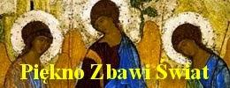 blog ks Rafała Szwedowicza
