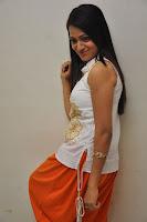Reshma Gallery