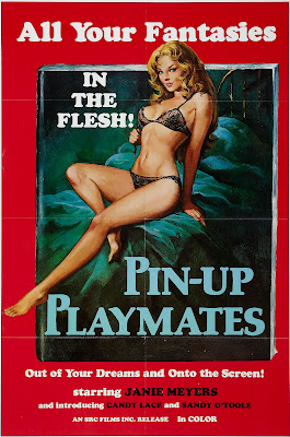 vintage pin up movie poster