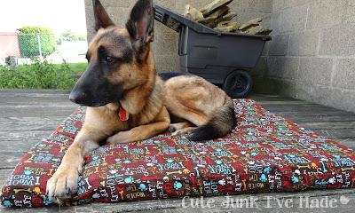 2-Hour & $20 Dog Bed - Zeke on bed, landscaping stones