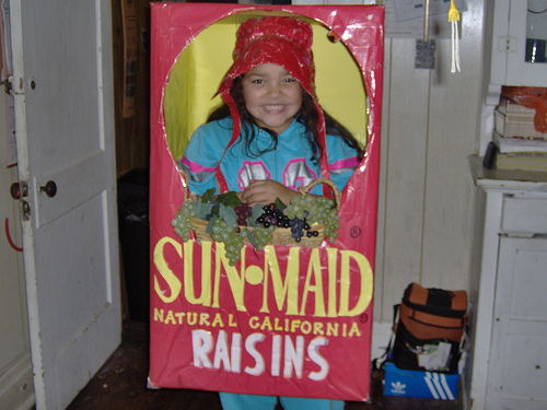 Homemade halloween costume ideas let 39 s celebrate for Easy homemade costume ideas for kids
