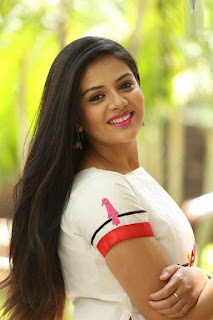 chandrika movie heroine sreemukhi photos