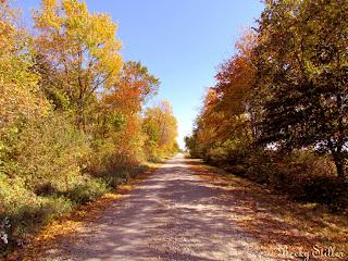 spiritual road, spiritual path, spiritual journey, spiritual awakening