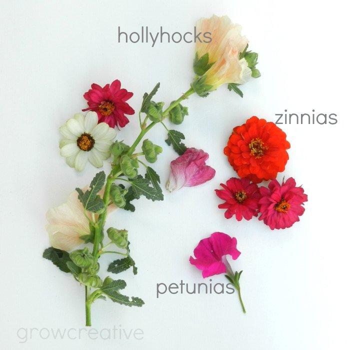 wildflowers and herb photography: grow creative