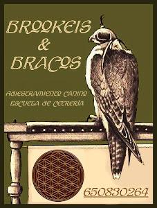 BROOKEIS & BRACOS