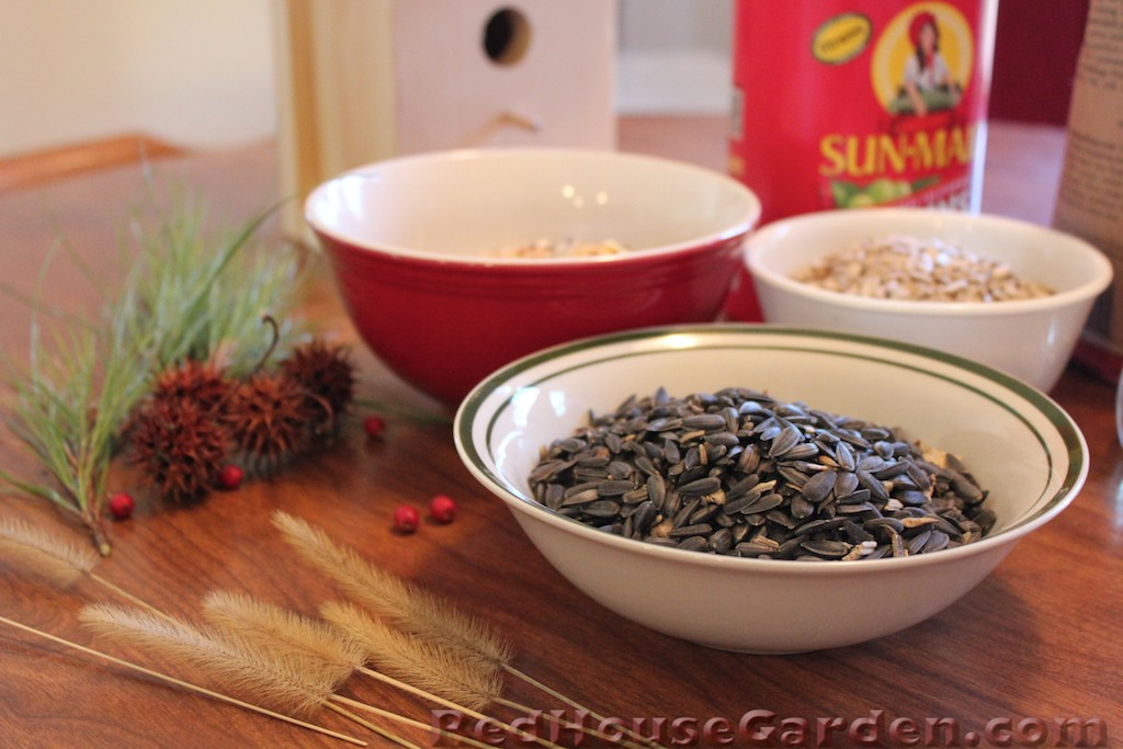 Red house garden how to make an edible birdhouse for Bird seed glue recipe