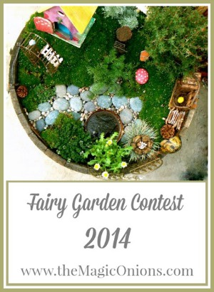 http://www.themagiconions.com/2014/04/fairy-garden-contest-2014-enter-here.html