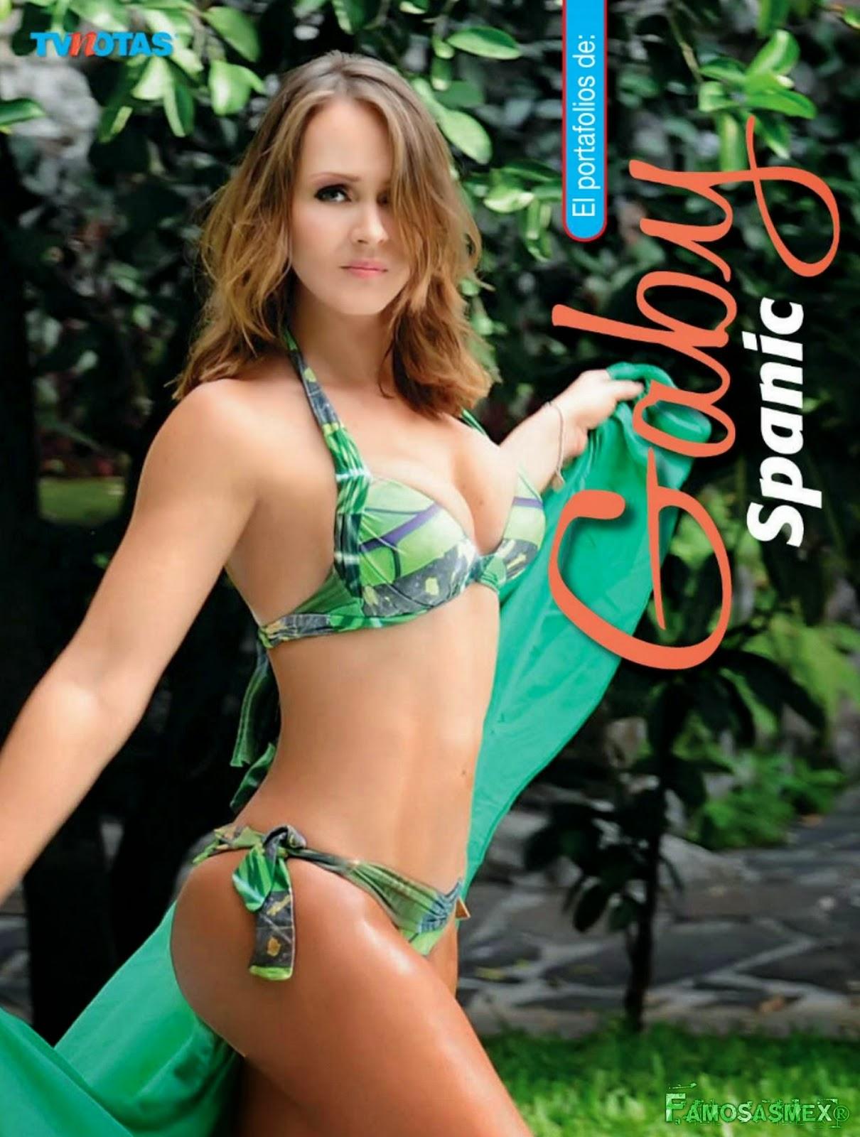 Gaby Spanic Bikini 11