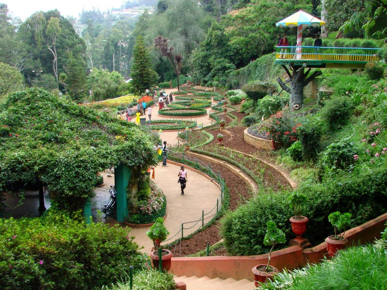 Botanical Gardens Ootacamund Ooty