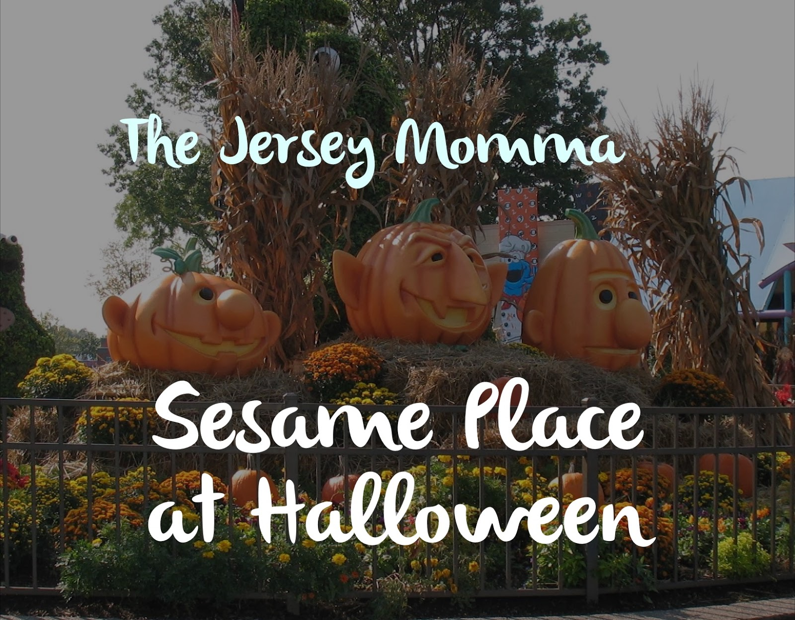 my post is centered around sesame place in the fall during the counts halloween spooktacular but my advice can be used year round - Sesame Place Halloween