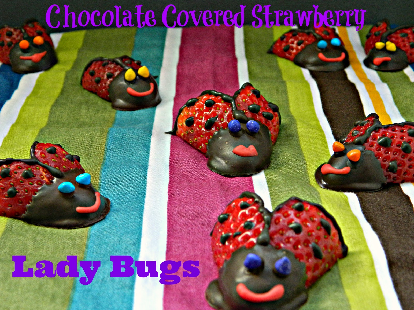 Chocolate Covered Strawberry lady bugs