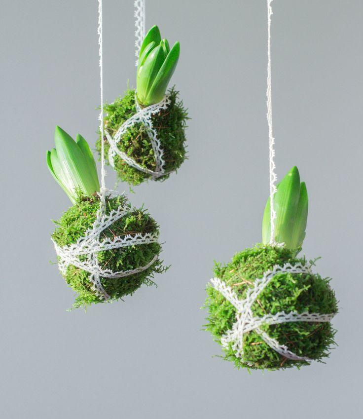 Tuindesign 20 leuke decoratie idee n met hyacinten for Leuke ideeen voor in huis