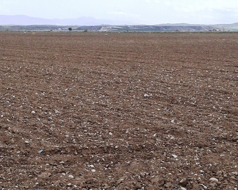 Recursos para la educaci n ambiental la importancia del suelo for Como esta constituido el suelo