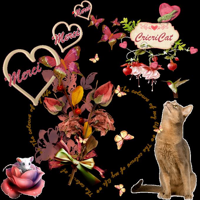 Autour des chats merci de tout coeur for Livraison fleurs avec message