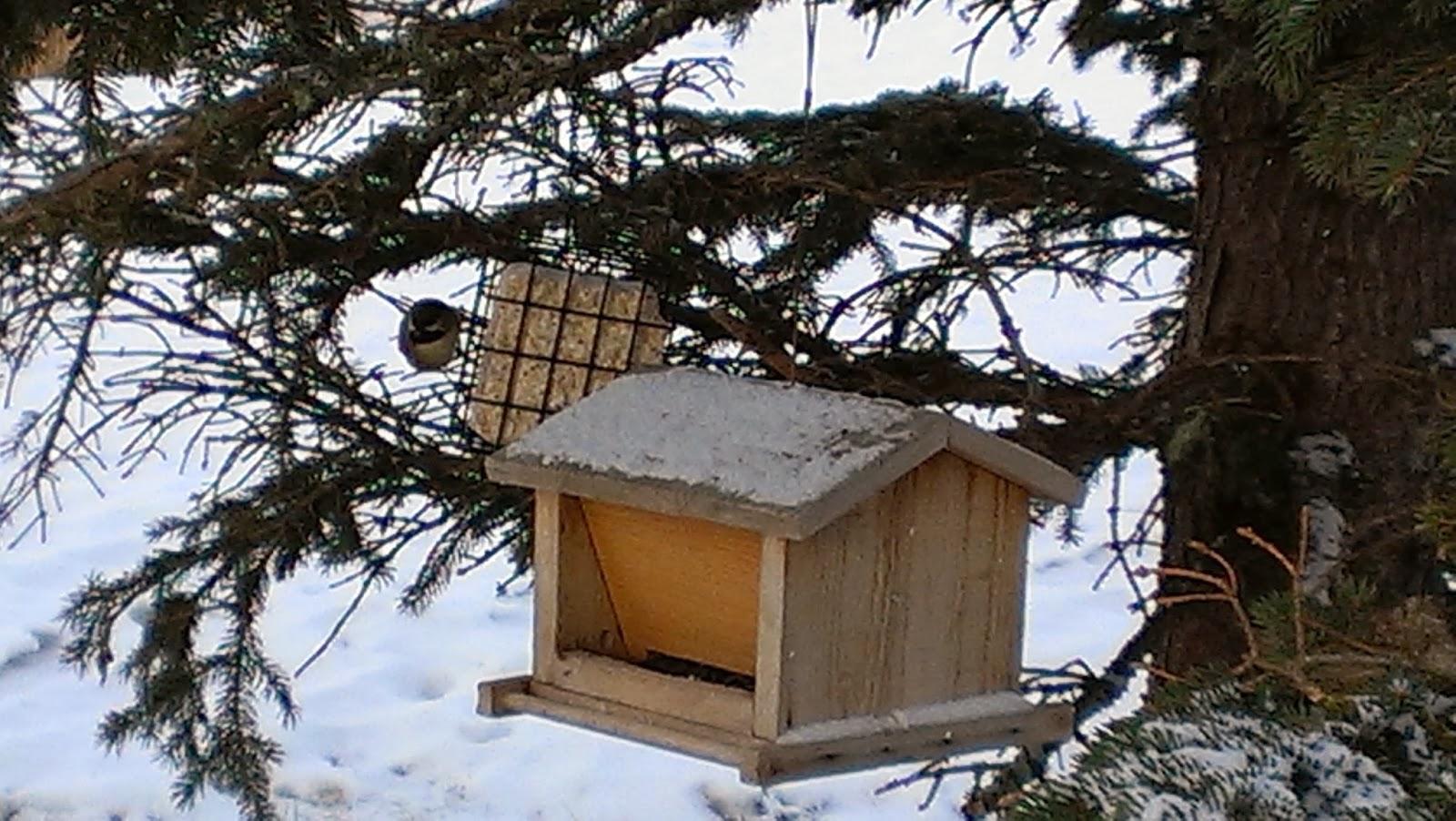 birdfeeders