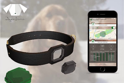 Must Have Gadgets For Dog Owners (15) 7