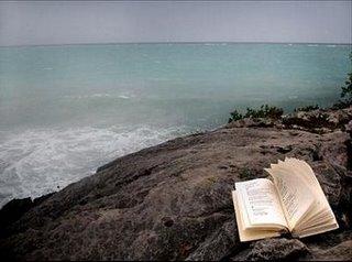 Playa y libro