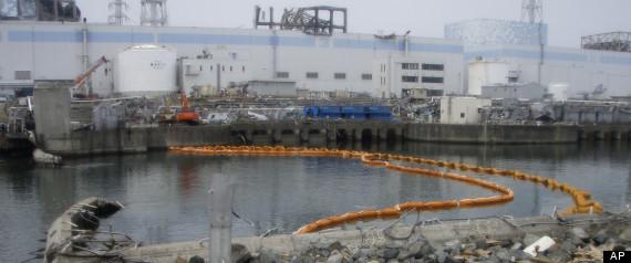 http://silentobserver68.blogspot.it/2012/10/fukushima-nuclear-disaster-plants.html