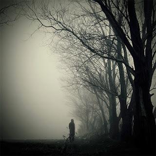 Silêncio, Silence