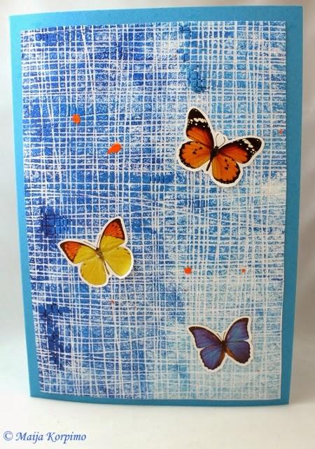 Perhoset lentävät keväisellä sinitaivaalla