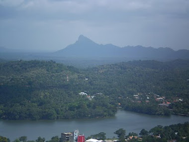 View from athugala