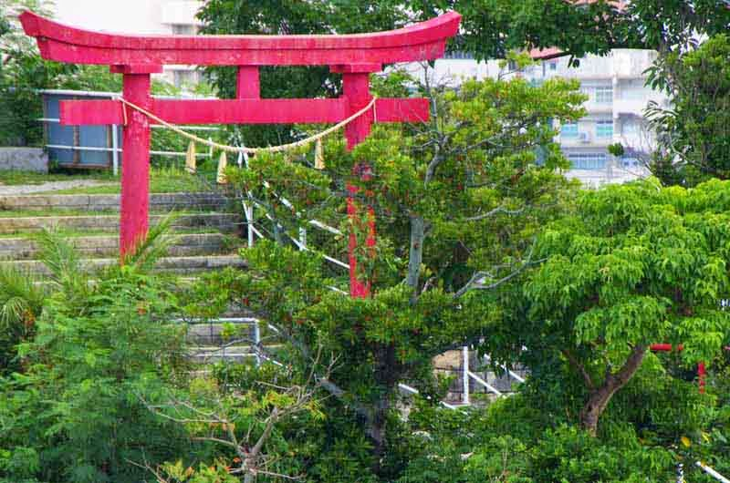red torii,shrine,hill,Buddhism