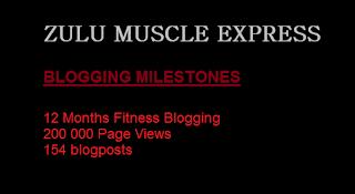 1 year 200 000 page views 154 blog posts