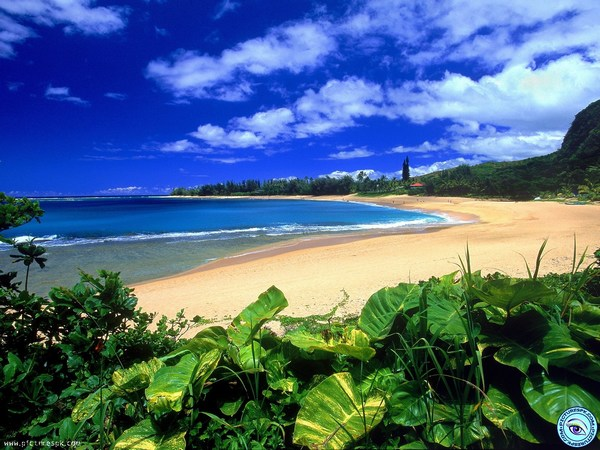 Images in HD of Beautiful Beach Scenery