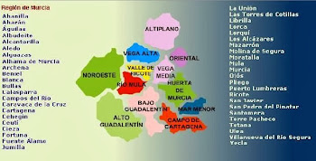 XXXIII-Media Maratón de Murcia