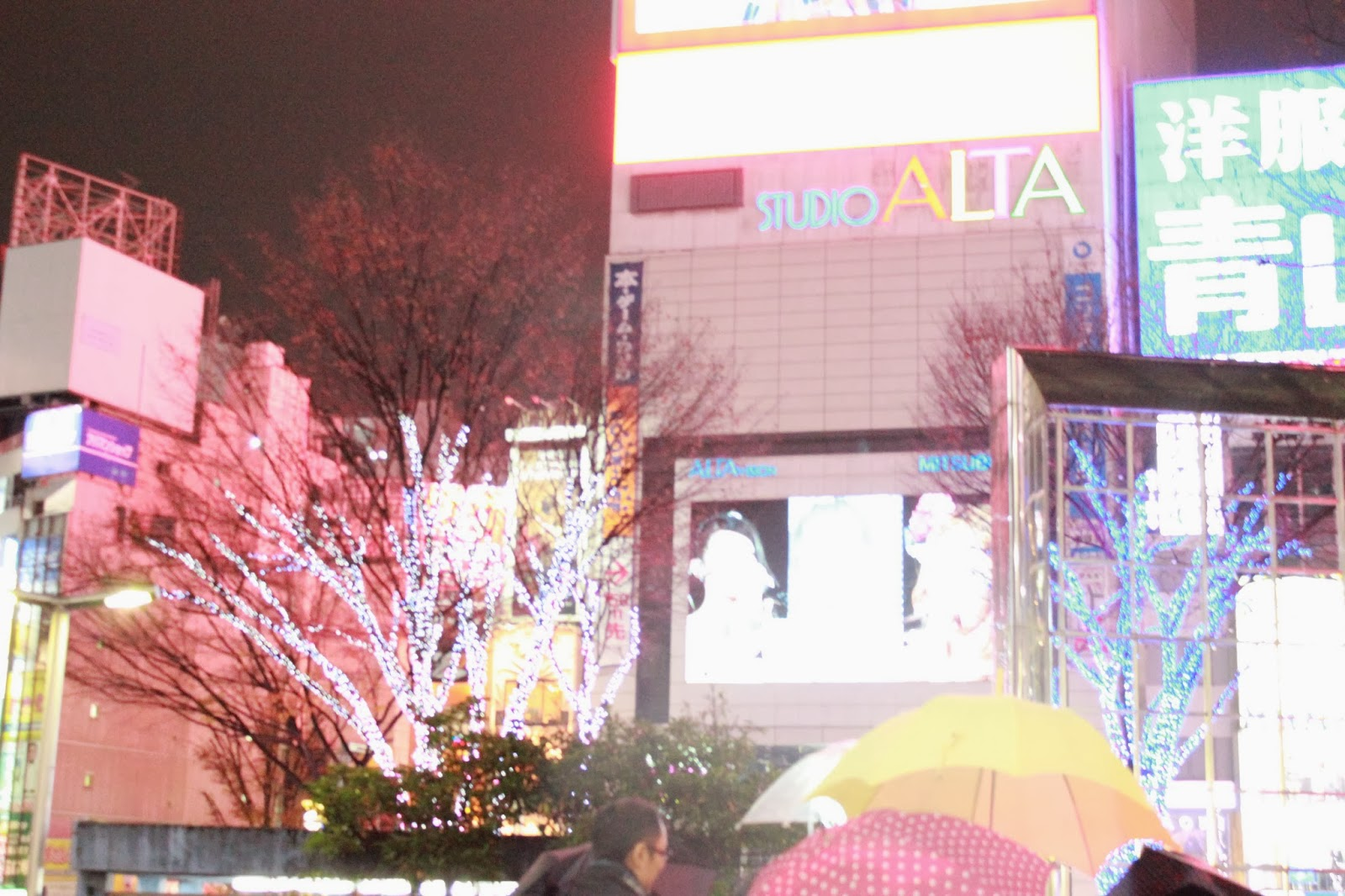Drizzly Night in Shinjuku