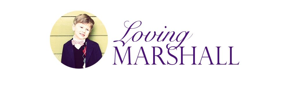 Loving Marshall
