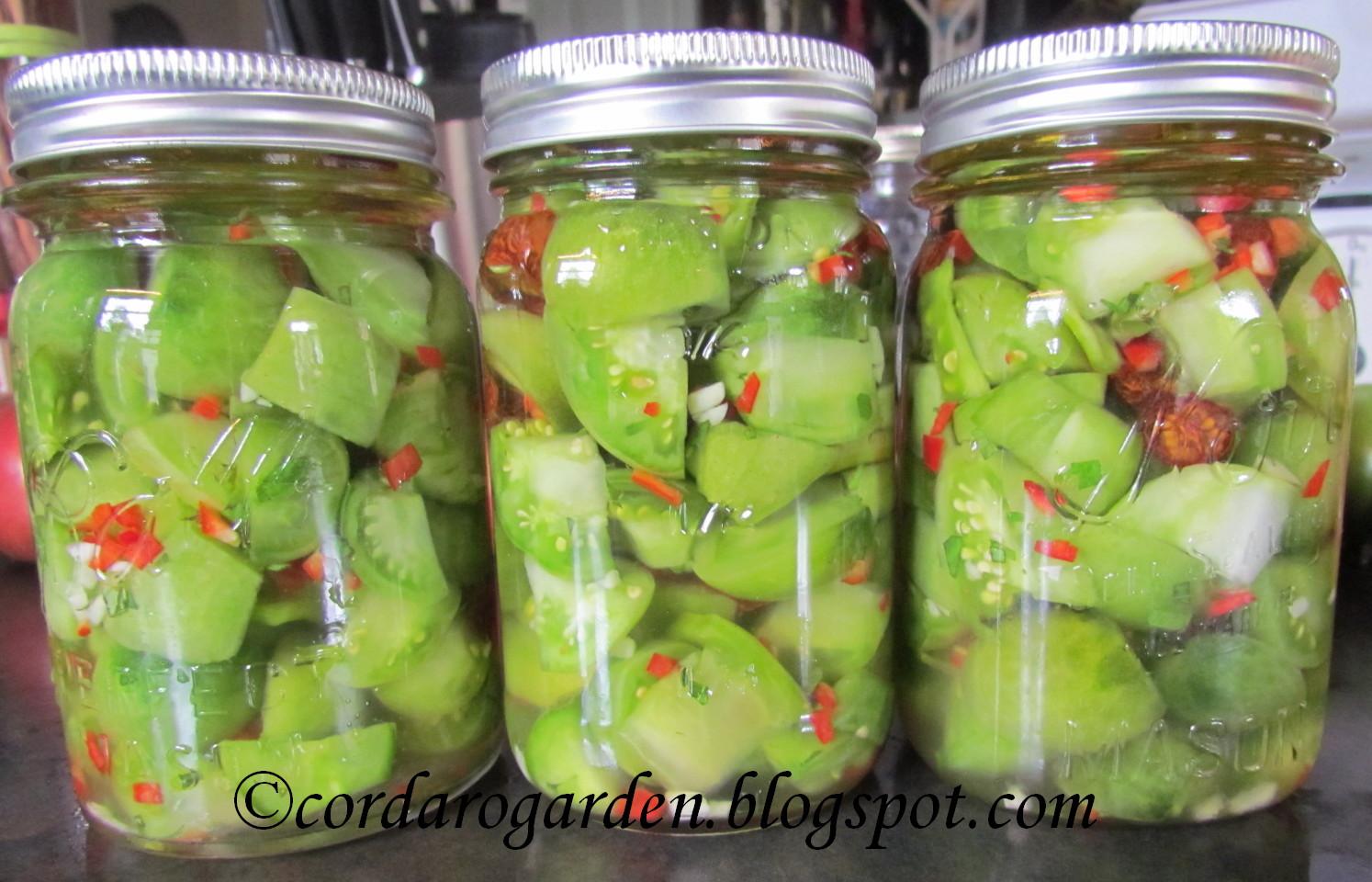 Салат из зеленых помидор на зиму: 7 рецептов в домашних 71
