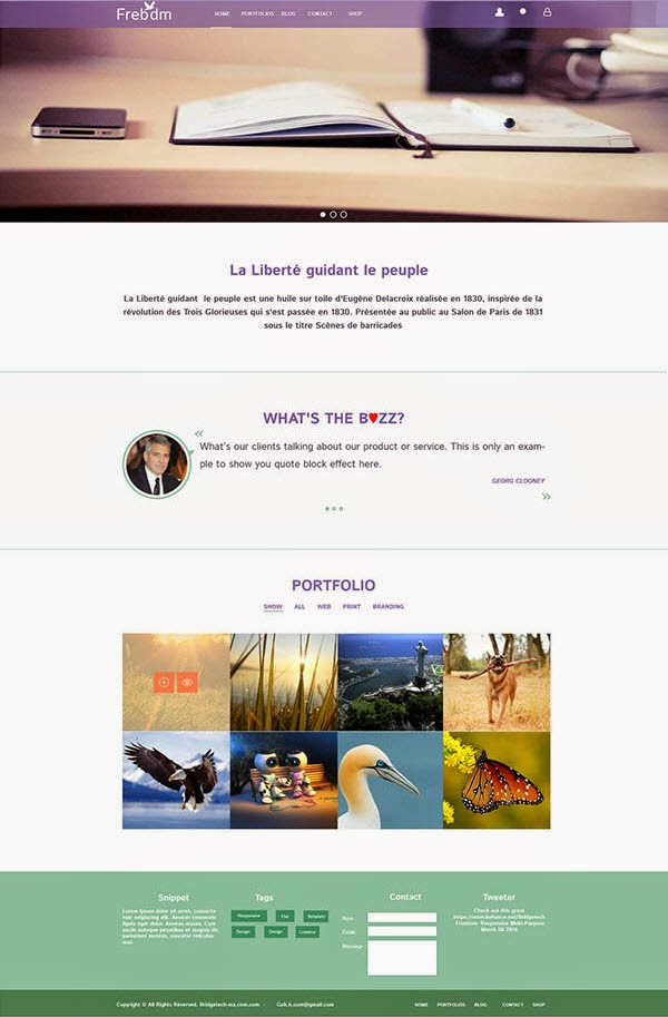Freedom PSD Website Template