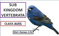 Animasi Biologi Sub Kingdom Vertebrata Class Aves