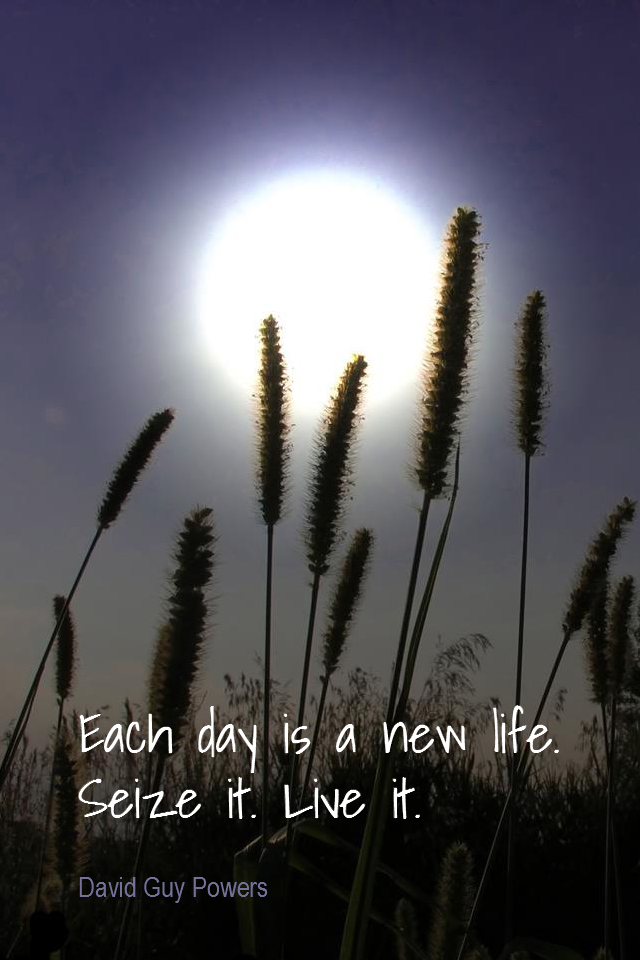 visual quote - image quotation for ENTHUSIASM - Each day is a new life. Seize it. Live it. - David Guy Powers