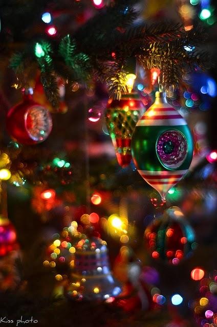 Old Fashion Christmas Tree Favorite Photoz
