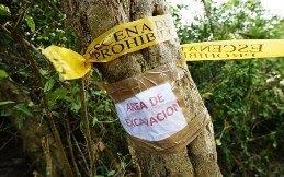 SEGOB planteará calendario para identificar 300 restos hallados