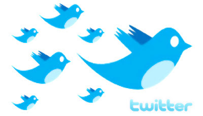 seguidors o followers al microblogging Twitter