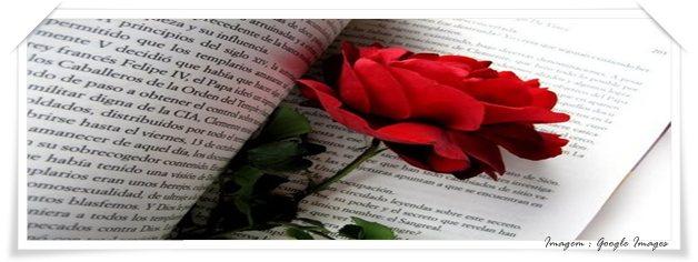 Livro com uma rosa