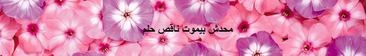 محدش بيموت ناقص حلم