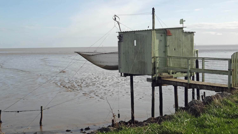 La pêche au lac grand du domaine de Riazan