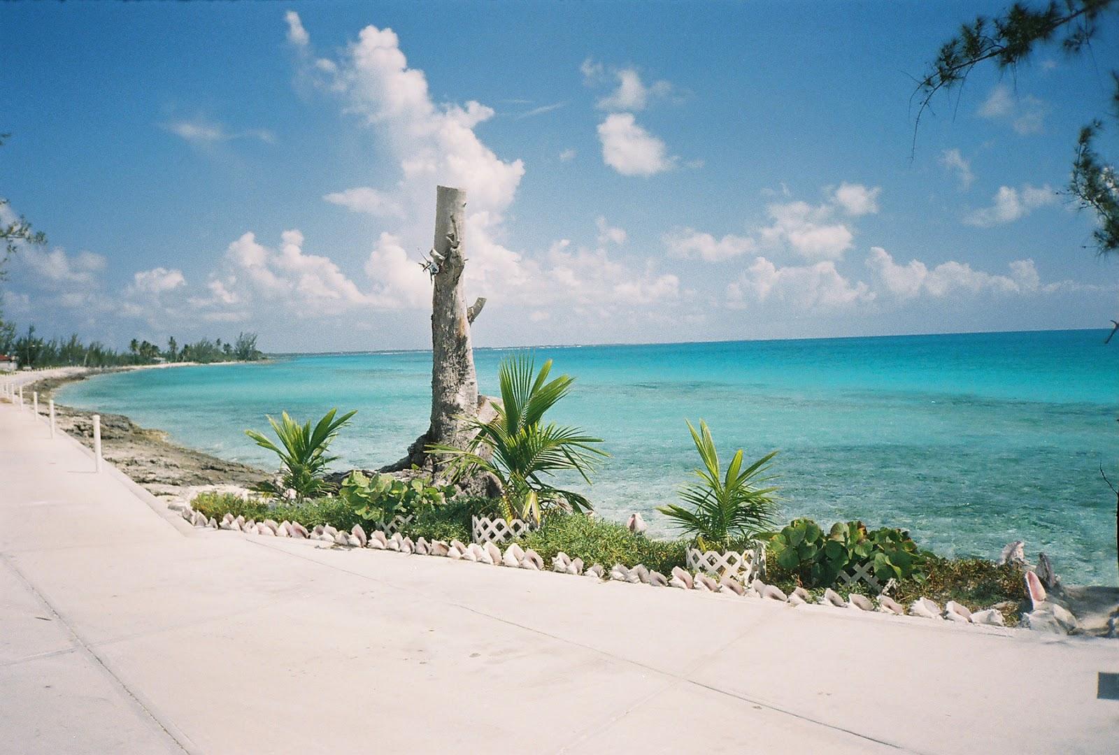 Restaurants On Long Island Bahamas