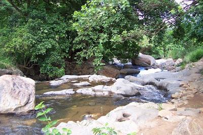 Tanzania-Uluguru-Mountain-Stream