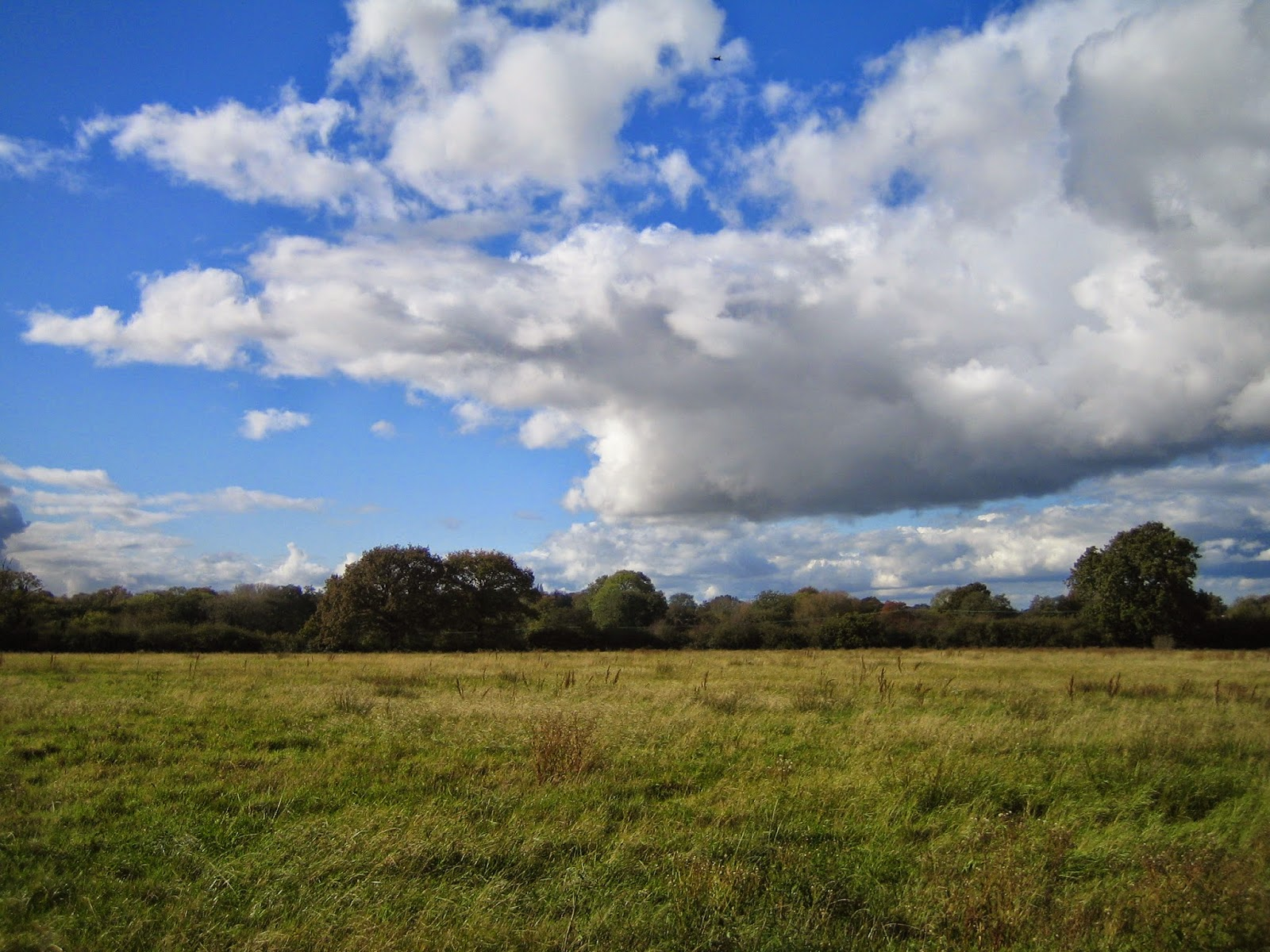 Friars Oak Fields skyscape 3