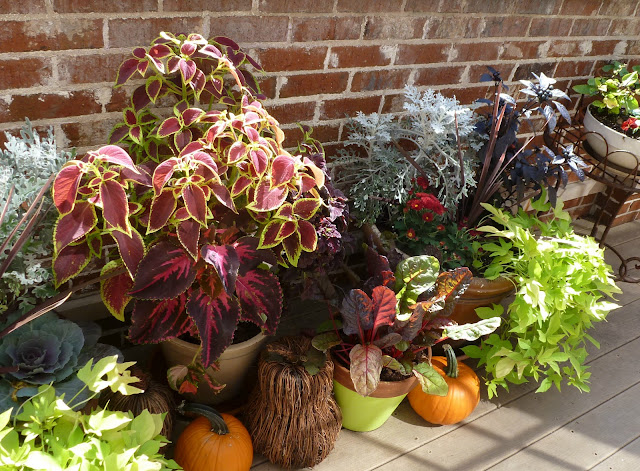 Outdoor Fall Planter Ideas http://www.designimprovised.com/2012/09/how-to-transform-your-container-garden.html